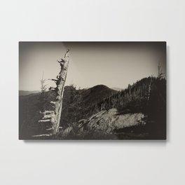 The Black Mountains Metal Print