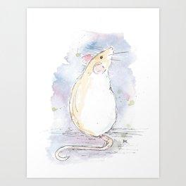 White rat. Art Print