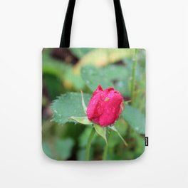 Little Green Bug on a Pink Rose Tote Bag