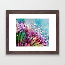 Dewdrops & Rainbows Framed Art Print