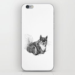 Squirrel drawing iPhone Skin