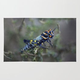 Colored Grasshopper Rug
