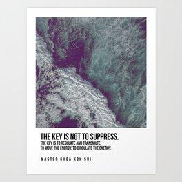 Do Not Suppress Art Print
