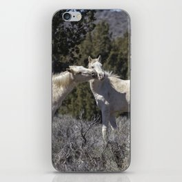 Wild Horses with Playful Spirits No 2 iPhone Skin