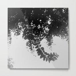 Leaf Curl Metal Print