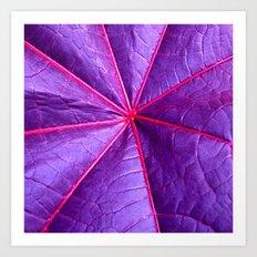purple leaf macro XIV Art Print