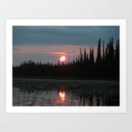 Boreal Rain forest Alaska Art Print