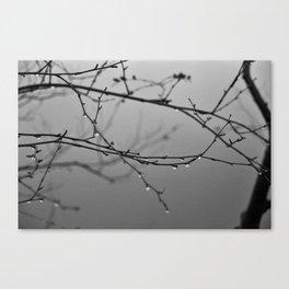 A Whisper No. 04 Canvas Print