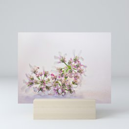 Cilantro flower - Botanical Photography Mini Art Print