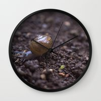 snail Wall Clocks featuring Snail by Heartland Photography By SJW
