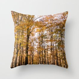 North Georgia Fall Colors Throw Pillow