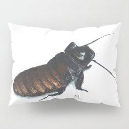 Madagascar Hissing Cockroach Pillow Sham