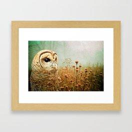 Barred Owl in Foggy Forest Framed Art Print