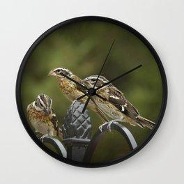 Grosbeaks Three Wall Clock
