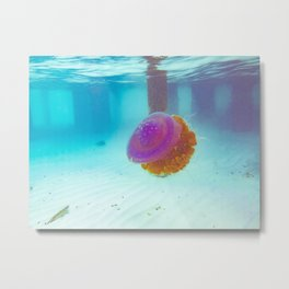 Crown Jellyfish Maldives Metal Print