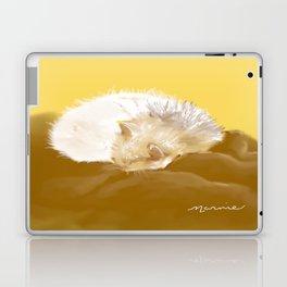 Sleeping Kitty Laptop & iPad Skin
