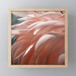 Flamingo #1 Framed Mini Art Print
