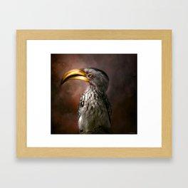 Hornbill Bird Framed Art Print