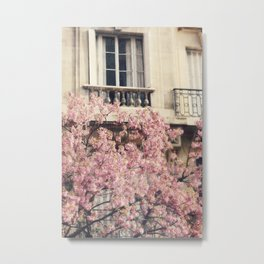 Paris Blooms II Metal Print