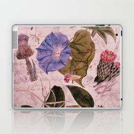 Botanical Study #4, Vintage Botanical Illustration Collage Art Laptop & iPad Skin