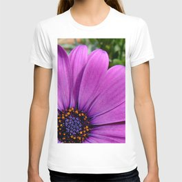 Purple Osteospermum T-shirt