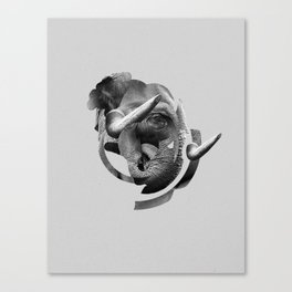 / skin / elephant Canvas Print
