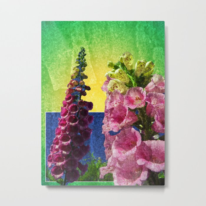 Two Foxglove flowers on texture and frame Metal Print