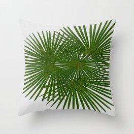 Fan Palm Throw Pillow