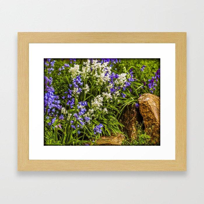 Blue and White Bells Framed Art Print