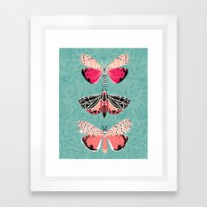 Lepidoptery No. 6 by Andrea Lauren Framed Art Print