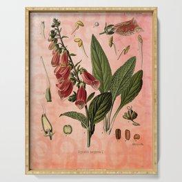 Vintage Botanical Illustration Collage, Foxgloves, Digitalis Purpurea Serving Tray