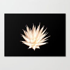Efflorescence 25 Canvas Print