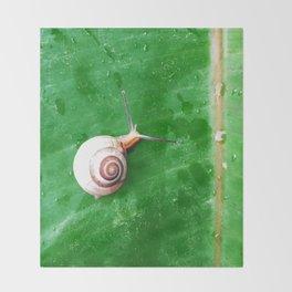 Snail After Rain Throw Blanket