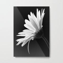 Flower BW Metal Print