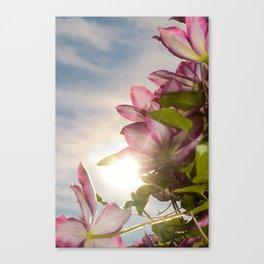 Towering Clematis Botanical / Nature / Floral Photograph Canvas Print