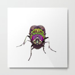 Purple Green Pschedelic Fly Metal Print