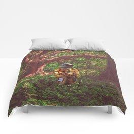 Misplaced Comforters