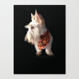 Wheaten Scottish Terrier - The Scottie Pose Canvas Print