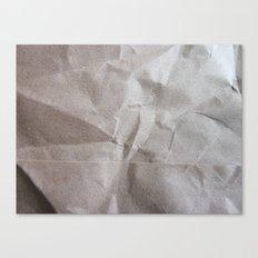 Brown bagging it. Canvas Print