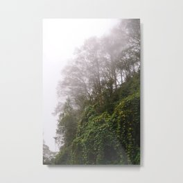 Cloud Forest Metal Print