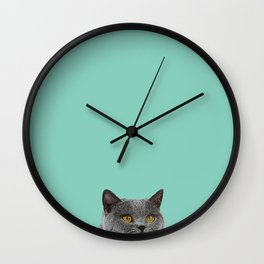 Duck Egg Blue British Short-hair Wall Decor Cat Clock Wall Clock