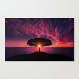 Magical Tree Sunset Canvas Print