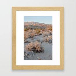 Allowed Framed Art Print