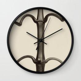 Karl Blossfeldt - Impatiens glandulifera Wall Clock