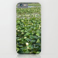 Amana Lilly Pond Slim Case iPhone 6s