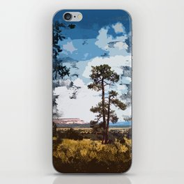 New Mexico Landscape iPhone Skin