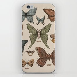 Butterflies and Moth Specimens iPhone Skin