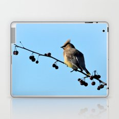 Waxwing on a Winter's Day Laptop & iPad Skin