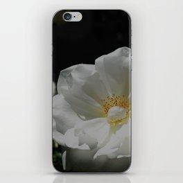 White Roses On Black iPhone Skin
