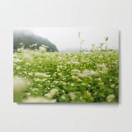 Meadow Metal Print